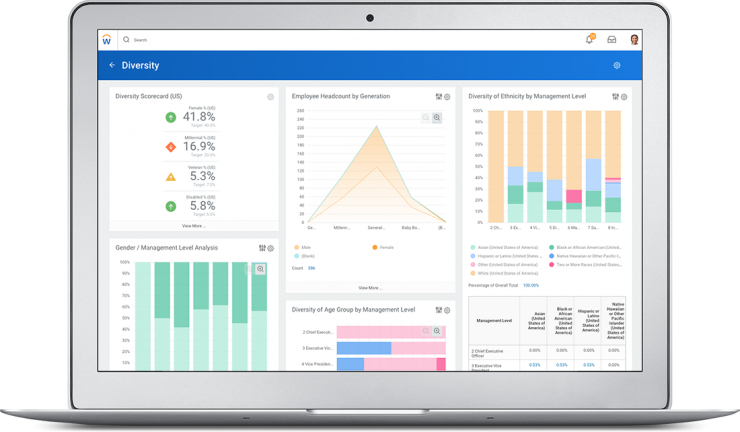 Workday Diversity Dashboard